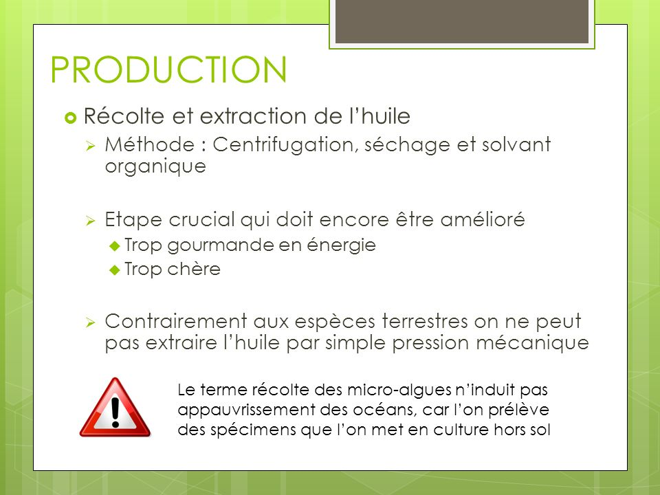 PRODUCTION Récolte et extraction de l'huile