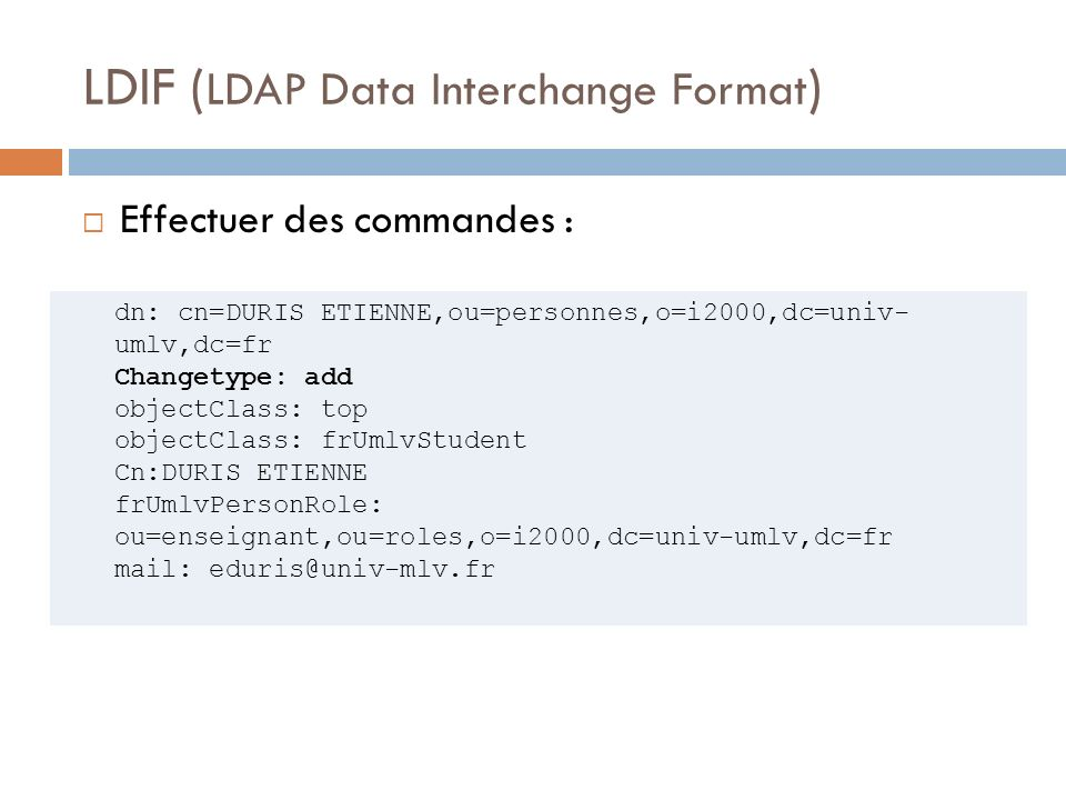LDIF (LDAP Data Interchange Format)