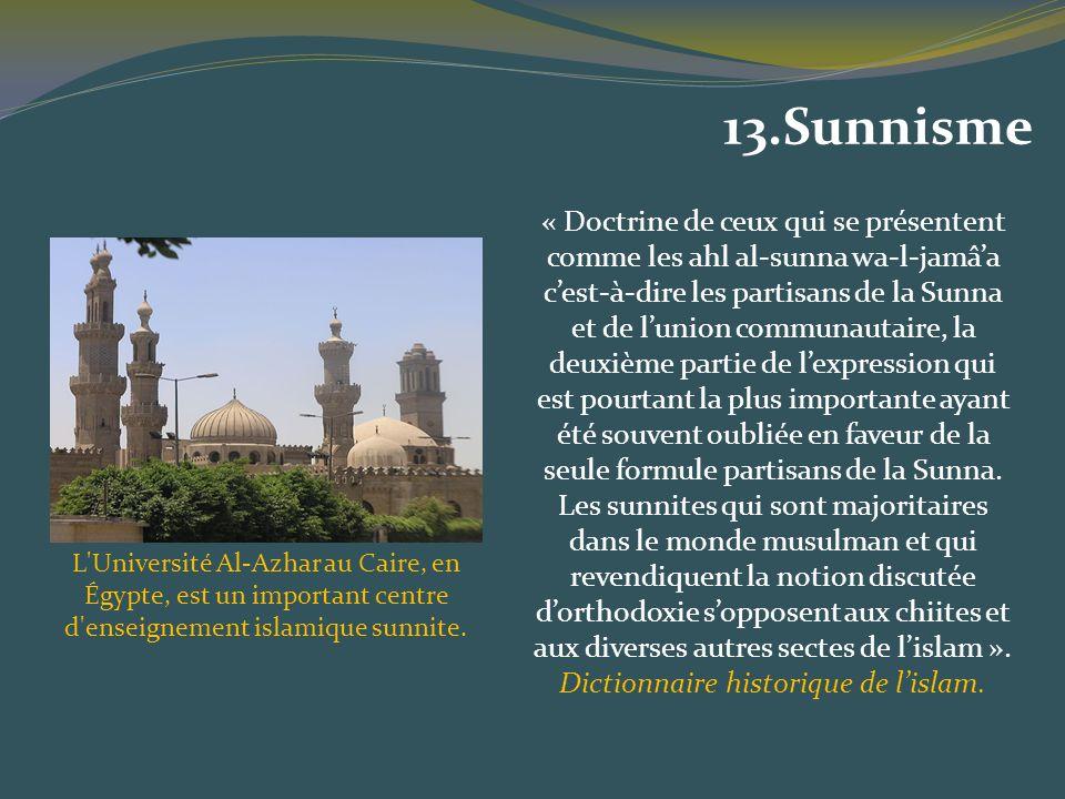 Dictionnaire historique de l'islam.