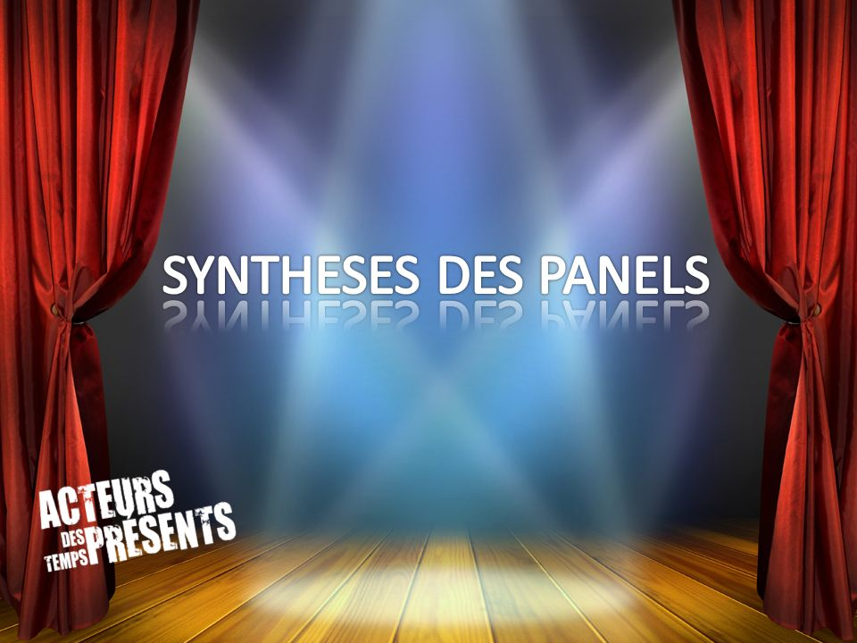 SYNTHESES DES PANELS
