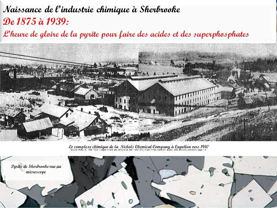 Pyrite de Sherbrooke vue au microscope