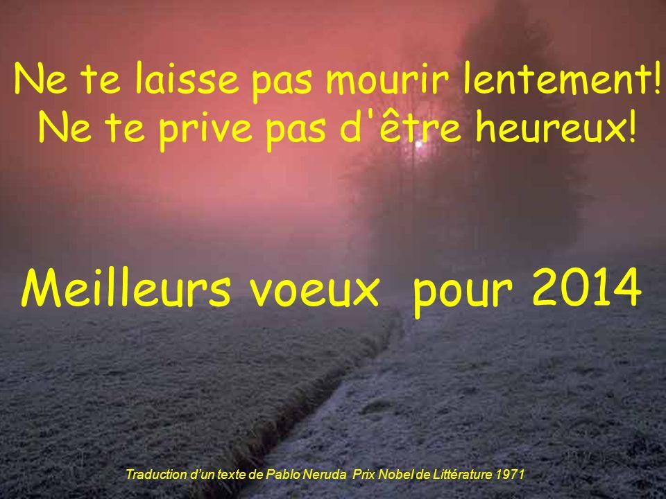 Meilleurs voeux pour 2014 Ne te laisse pas mourir lentement!
