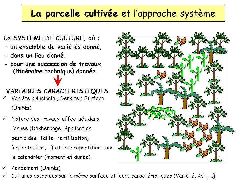 La parcelle cultivée et l'approche système
