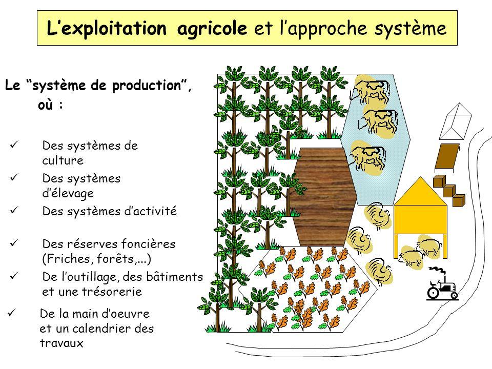 L'exploitation agricole et l'approche système