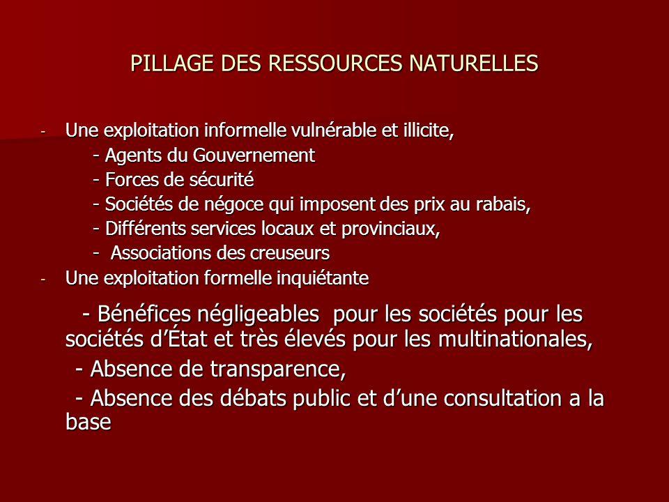 PILLAGE DES RESSOURCES NATURELLES