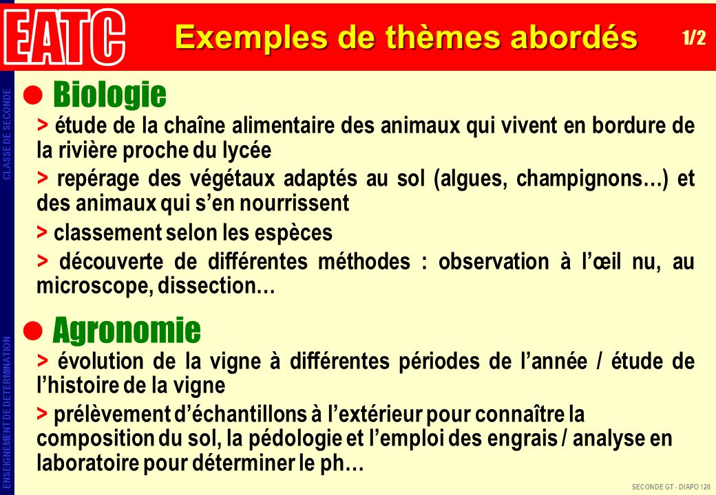 Exemples de thèmes abordés