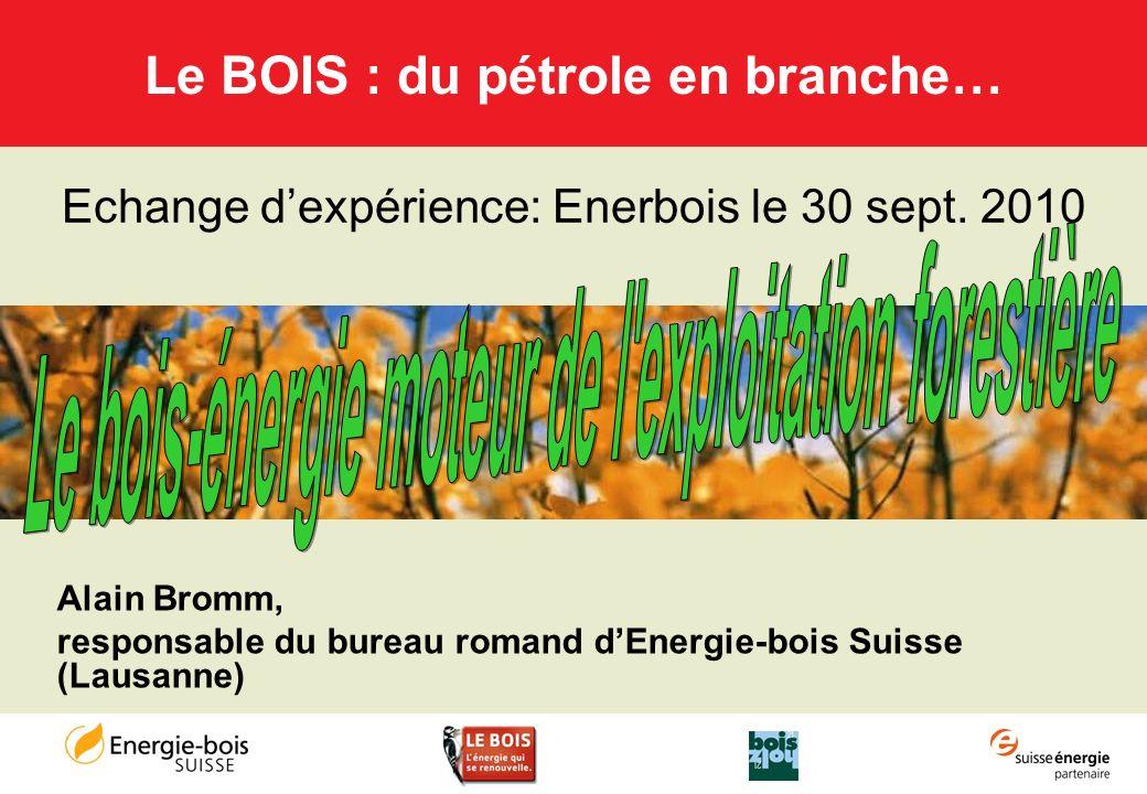 Le BOIS : du pétrole en branche…