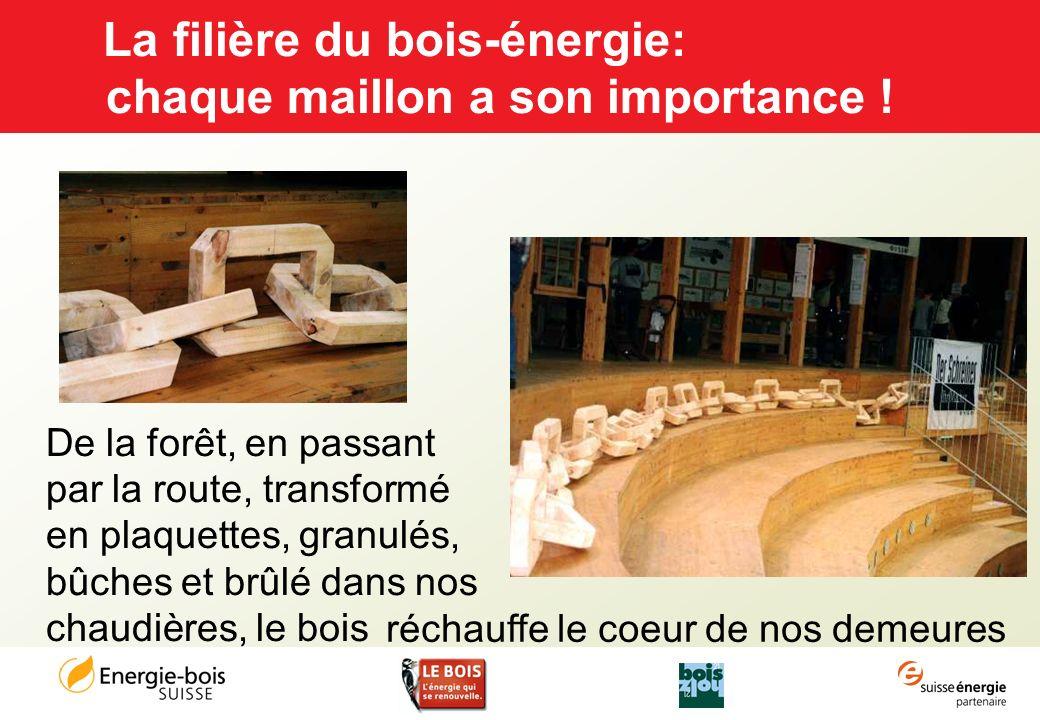 La filière du bois-énergie: chaque maillon a son importance !