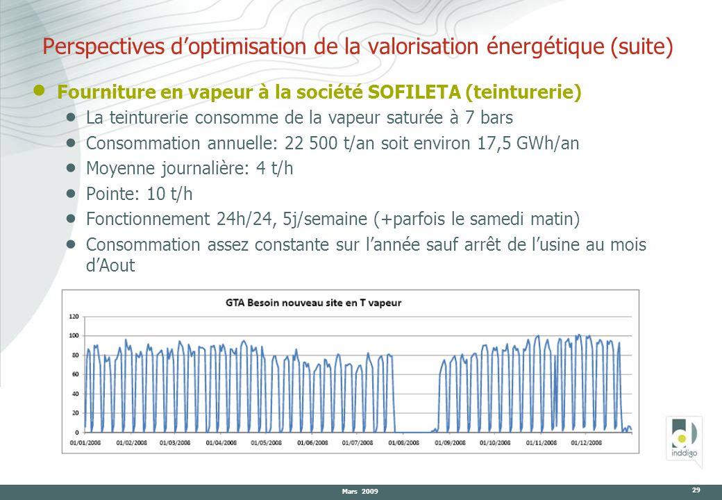 Perspectives d'optimisation de la valorisation énergétique (suite)