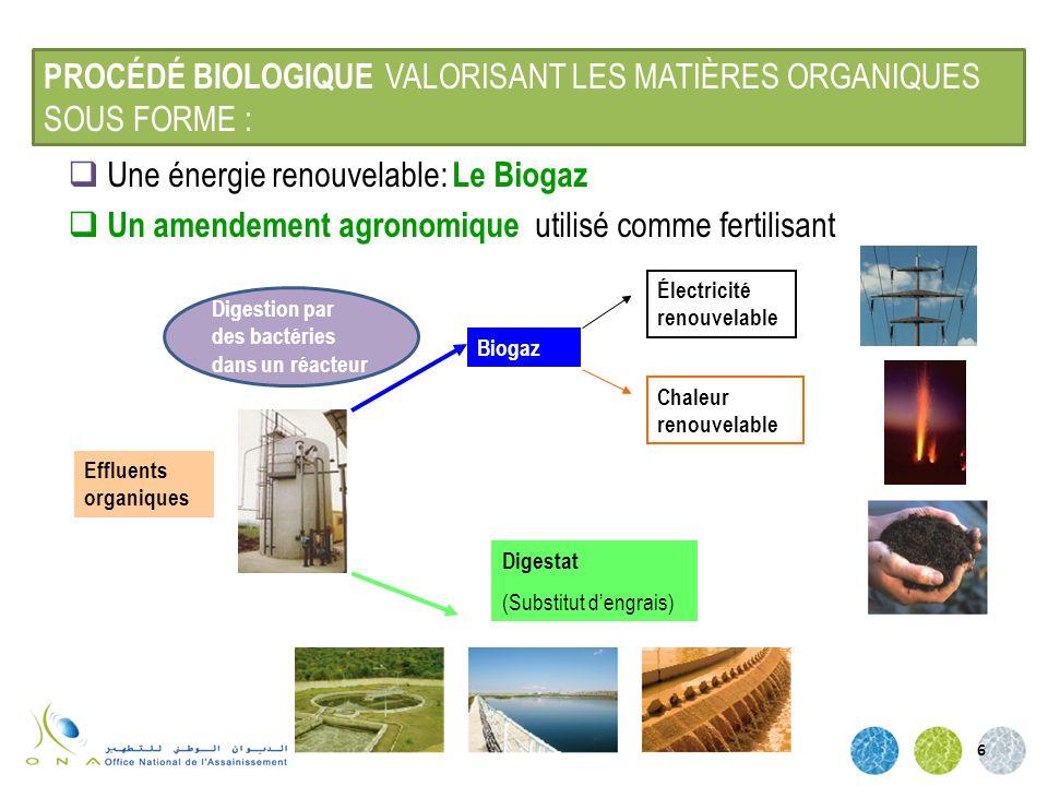 PROCÉDÉ BIOLOGIQUE VALORISANT LES MATIÈRES ORGANIQUES SOUS FORME :