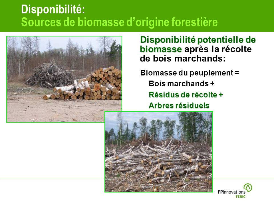 Disponibilité: Sources de biomasse d'origine forestière