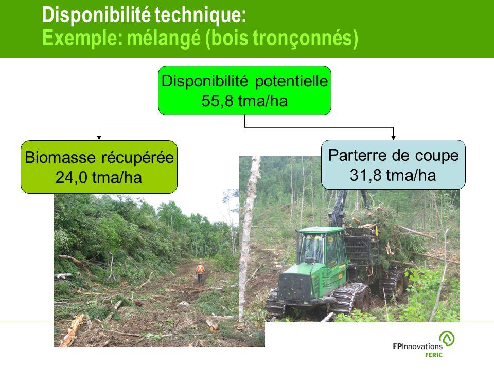Disponibilité technique: Exemple: mélangé (bois tronçonnés)
