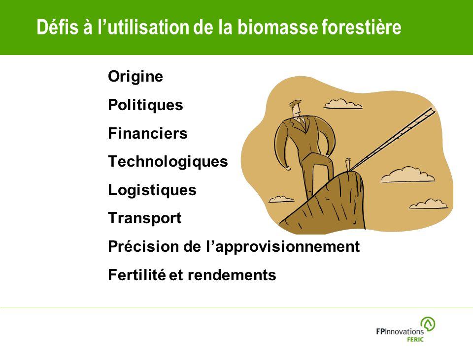 Défis à l'utilisation de la biomasse forestière