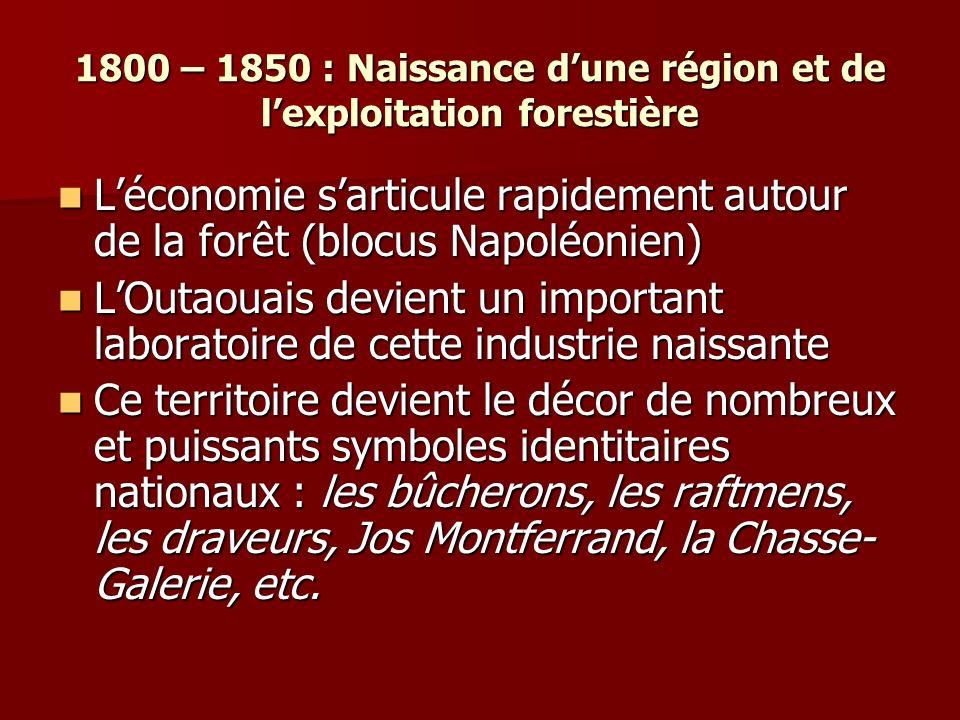 1800 – 1850 : Naissance d'une région et de l'exploitation forestière