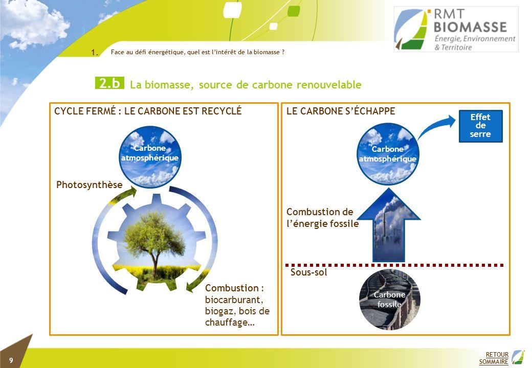 1. Face au défi énergétique, quel est l'intérêt de la biomasse 3.