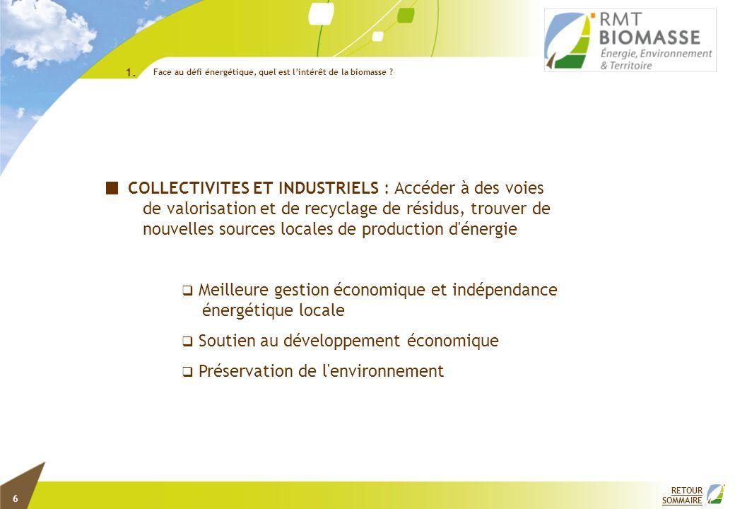 1. Face au défi énergétique, quel est l'intérêt de la biomasse 2.