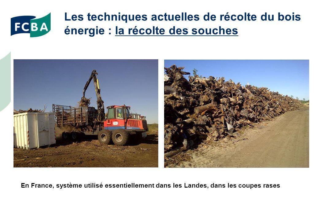 Les techniques actuelles de récolte du bois énergie : la récolte des souches