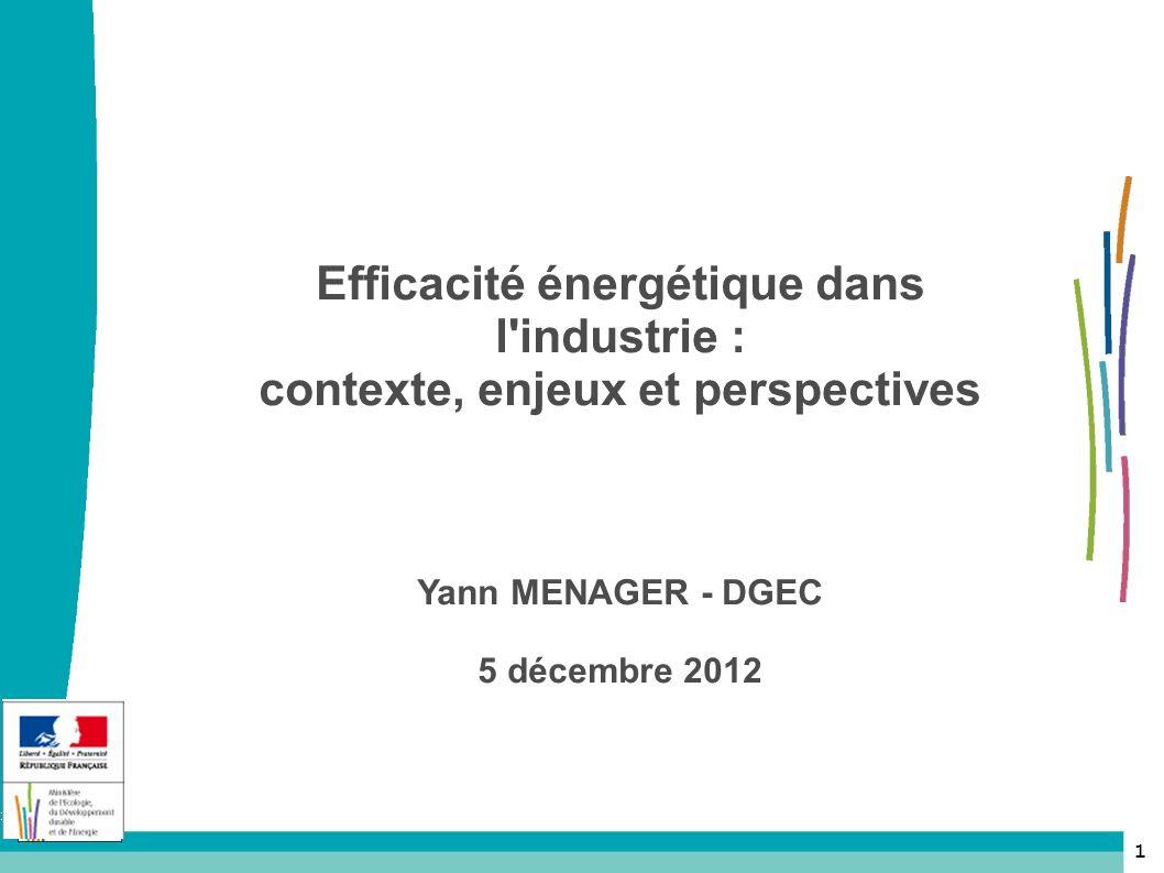 Efficacité énergétique dans l industrie : contexte, enjeux et perspectives Yann MENAGER - DGEC 5 décembre 2012