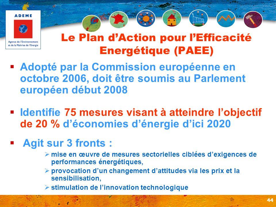 Le Plan d'Action pour l'Efficacité Energétique (PAEE)