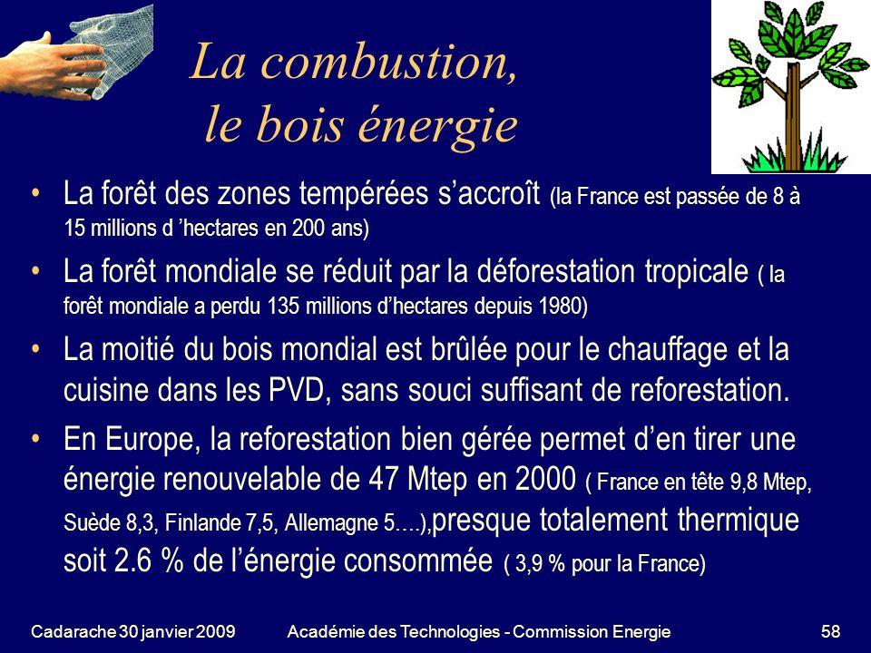 La combustion, le bois énergie