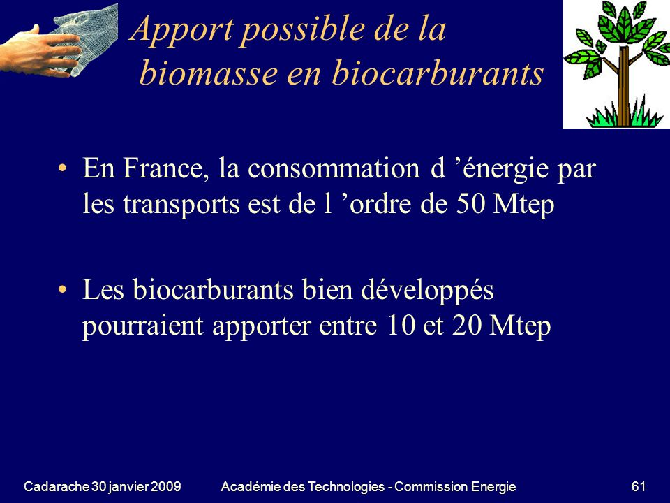 Apport possible de la biomasse en biocarburants