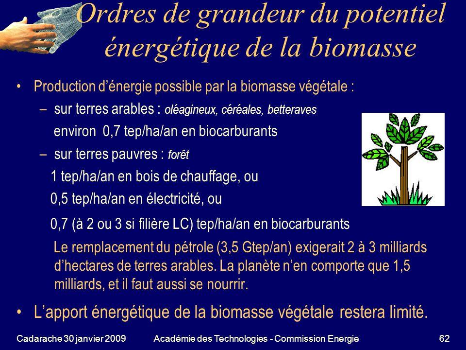 Ordres de grandeur du potentiel énergétique de la biomasse