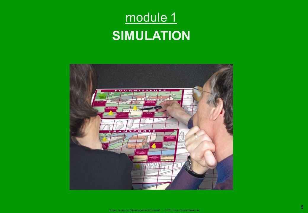 module 1 SIMULATION