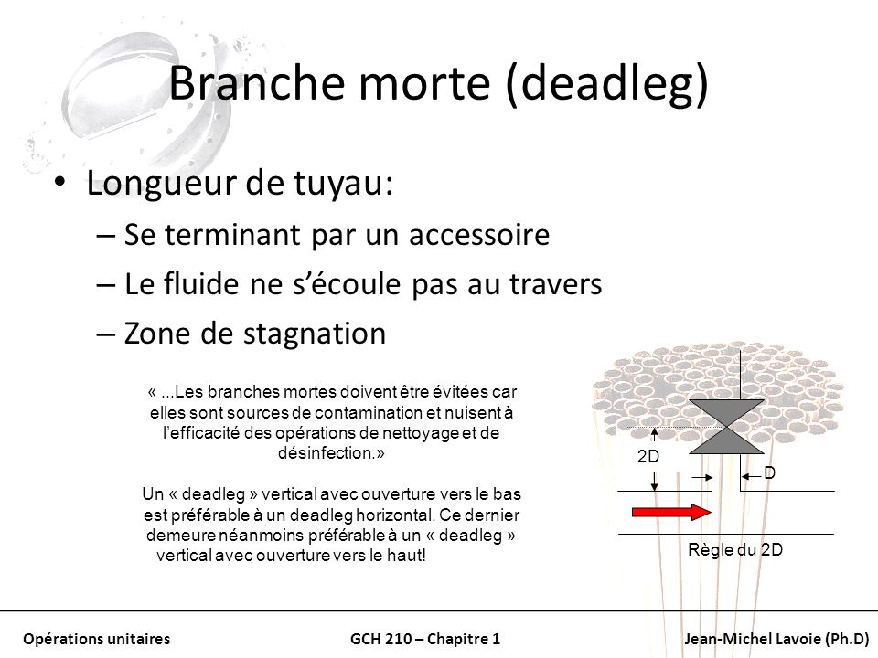 Branche morte (deadleg)