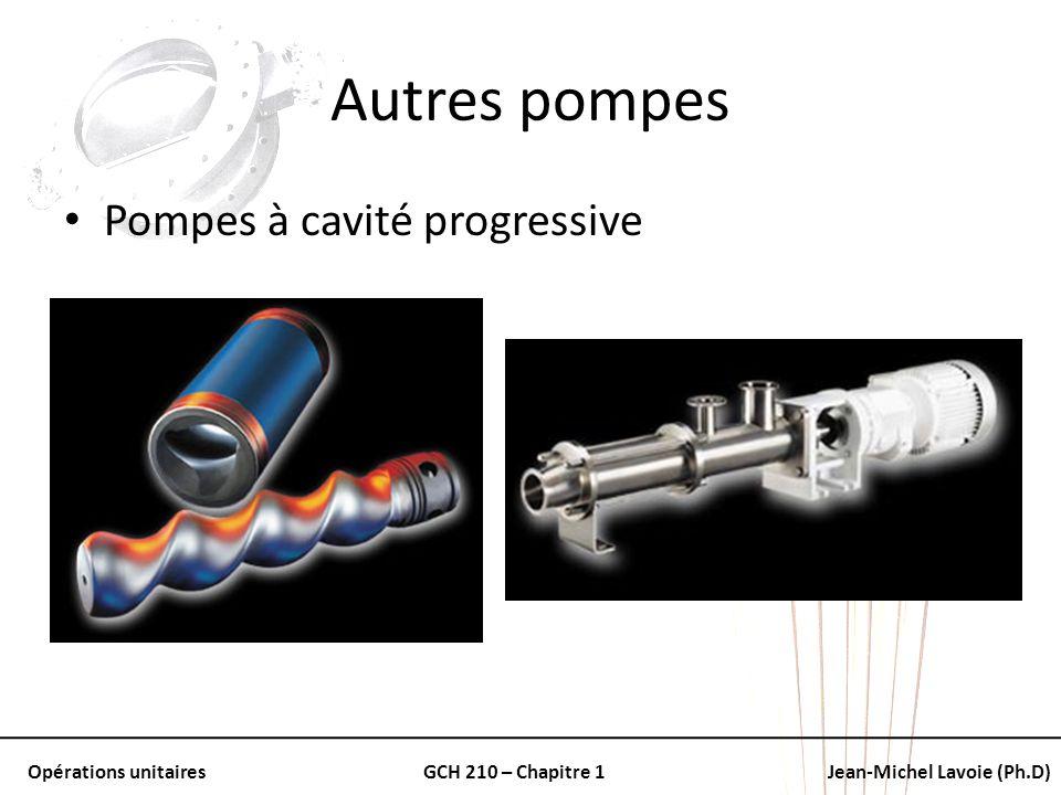 Autres pompes Pompes à cavité progressive