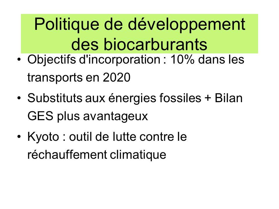 Politique de développement des biocarburants