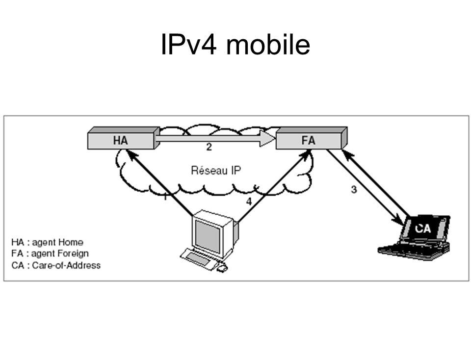 IPv4 mobile