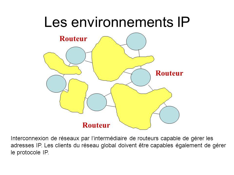 Les environnements IP Routeur