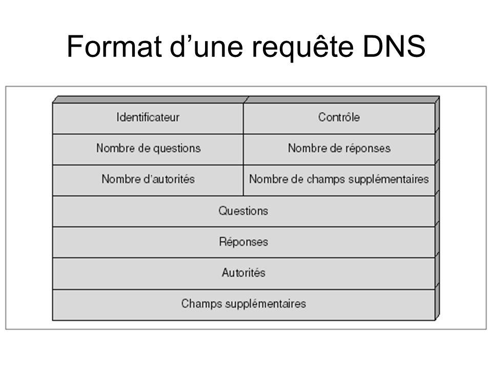 Format d'une requête DNS