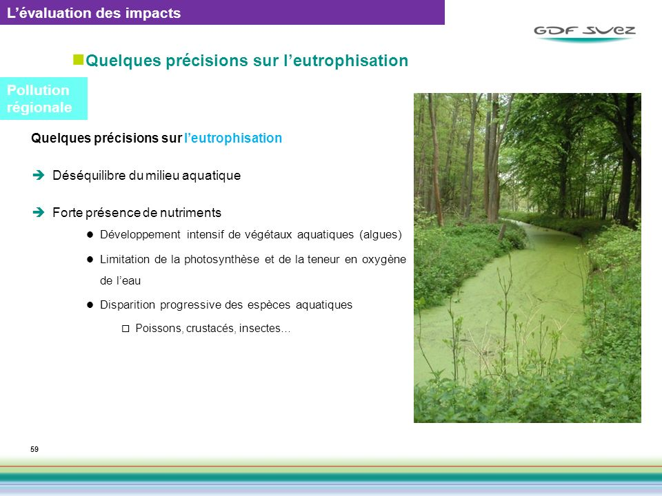 Quelques précisions sur l'eutrophisation