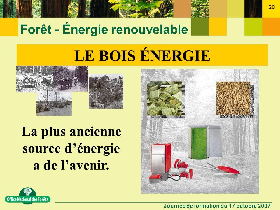 Forêt - Énergie renouvelable