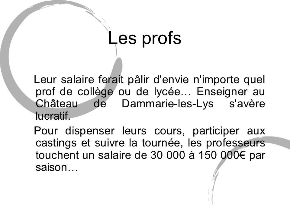 Les profs Leur salaire ferait pâlir d envie n importe quel prof de collège ou de lycée… Enseigner au Château de Dammarie-les-Lys s avère lucratif.