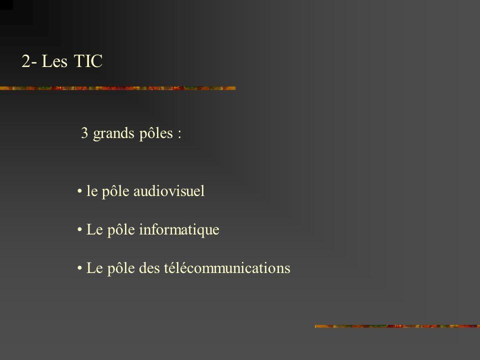 2- Les TIC 3 grands pôles : le pôle audiovisuel Le pôle informatique