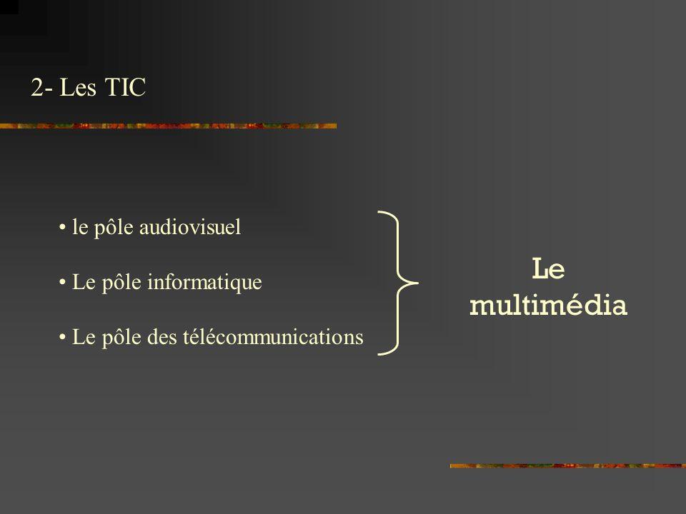Le multimédia 2- Les TIC le pôle audiovisuel Le pôle informatique