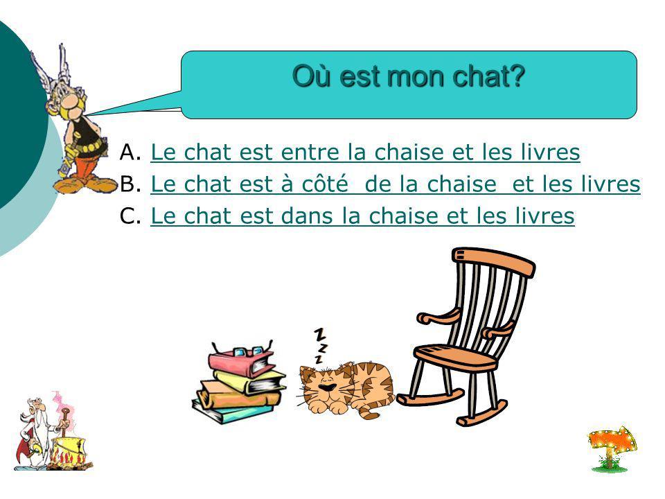 Où est mon chat A. Le chat est entre la chaise et les livres
