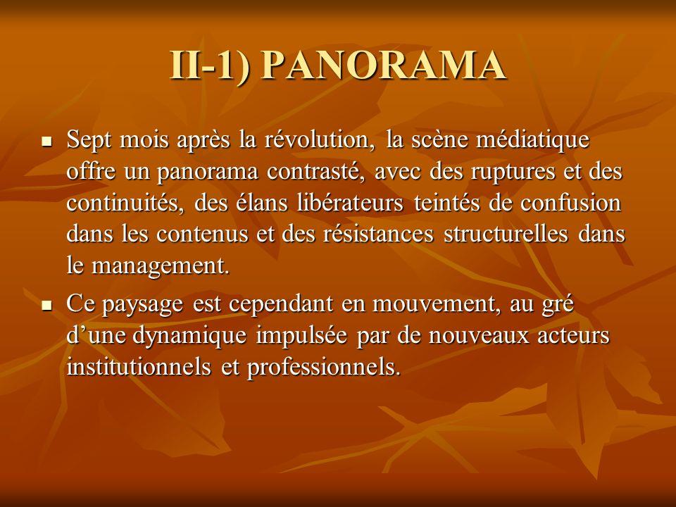 II-1) PANORAMA