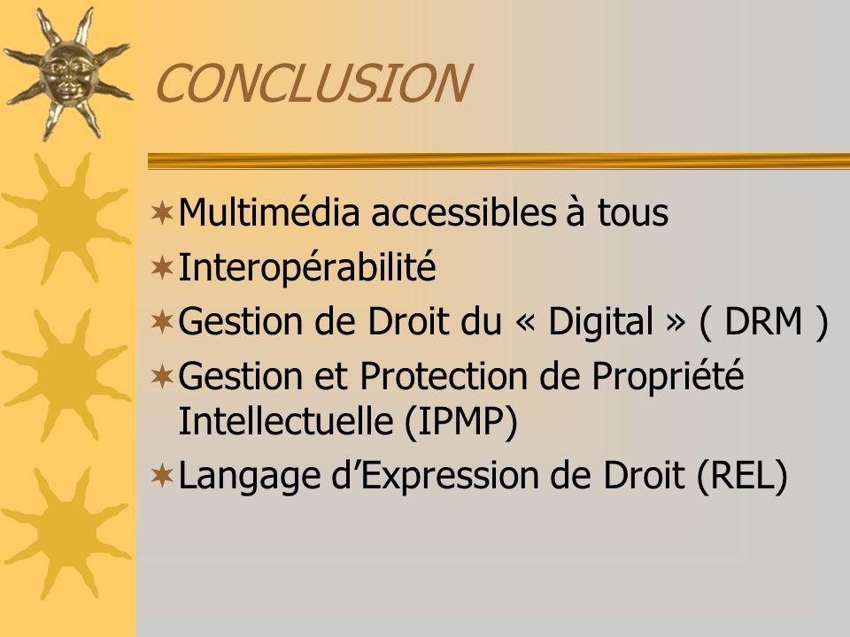 CONCLUSION Multimédia accessibles à tous Interopérabilité