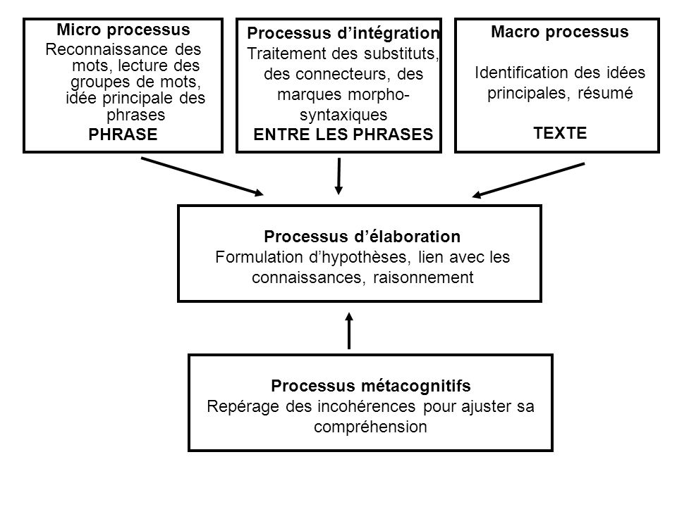 PHRASE ENTRE LES PHRASES Macro processus TEXTE