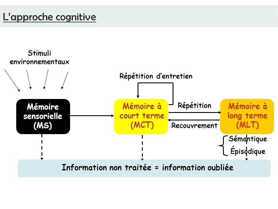 L'approche cognitive Mémoire sensorielle (MS)