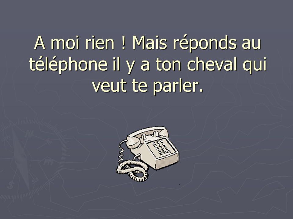 A moi rien ! Mais réponds au téléphone il y a ton cheval qui veut te parler.