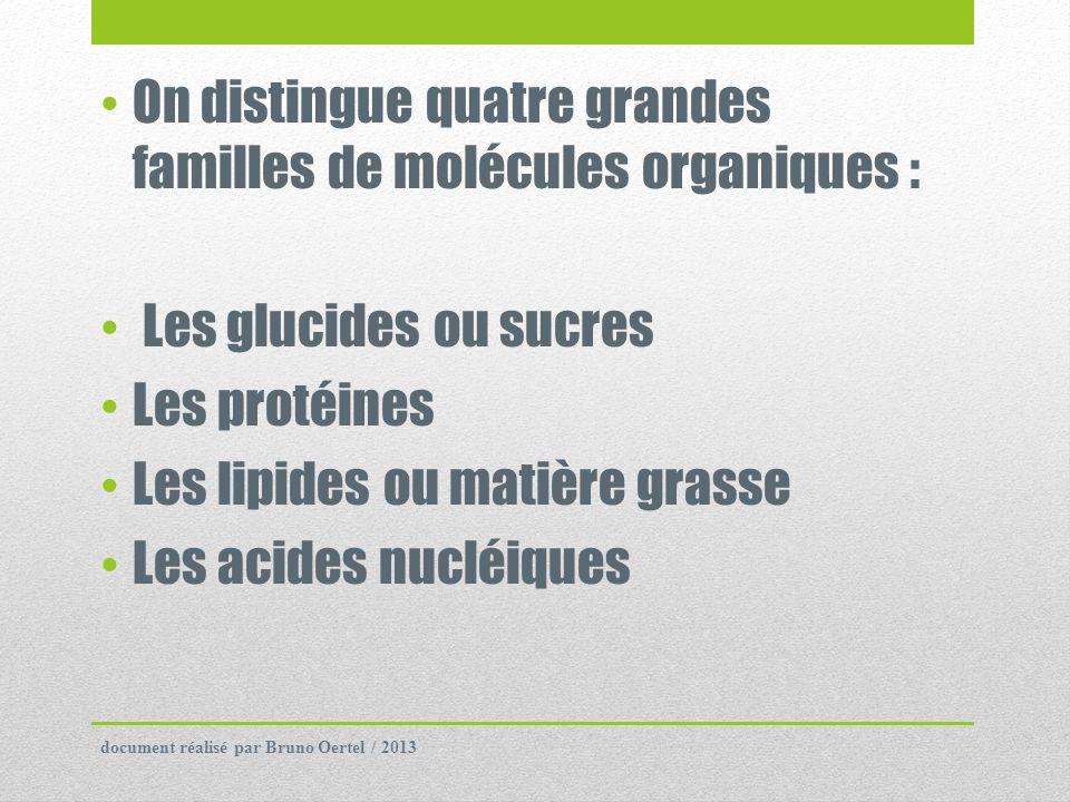 On distingue quatre grandes familles de molécules organiques :