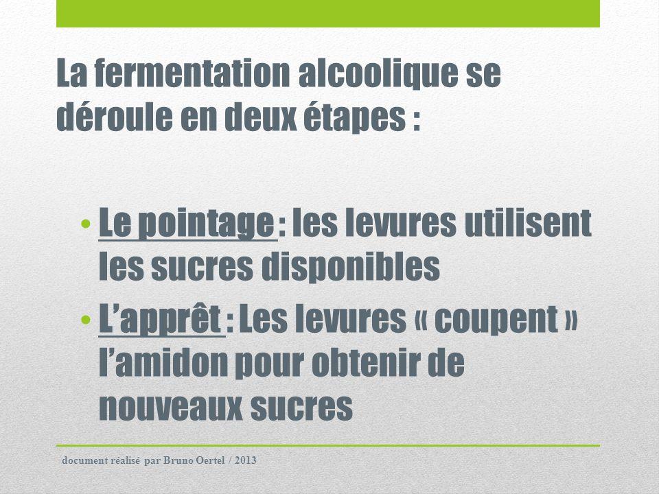 La fermentation alcoolique se déroule en deux étapes :