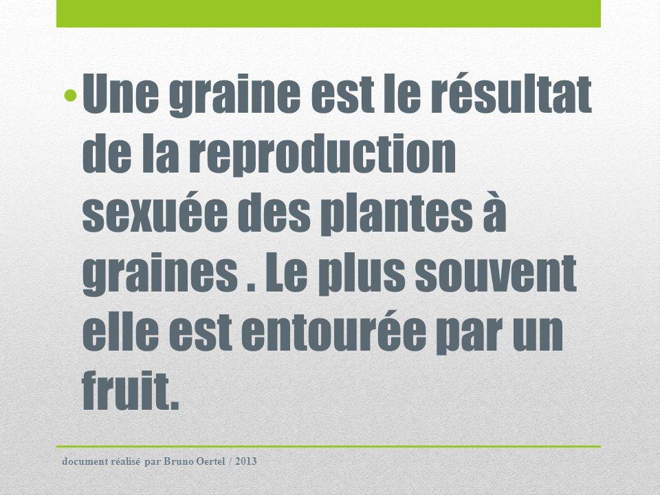 Une graine est le résultat de la reproduction sexuée des plantes à graines . Le plus souvent elle est entourée par un fruit.
