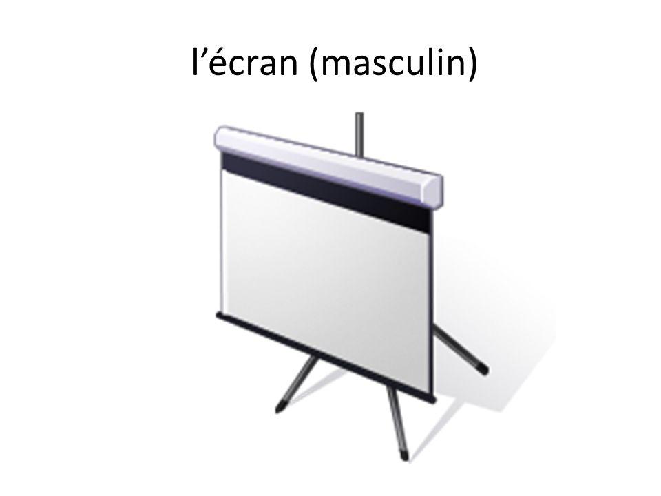 l'écran (masculin)