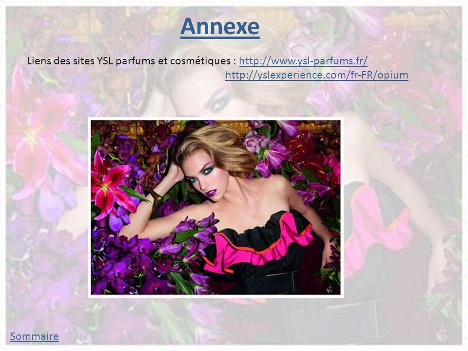 Annexe Liens des sites YSL parfums et cosmétiques : http://www.ysl-parfums.fr/ http://yslexperience.com/fr-FR/opium.