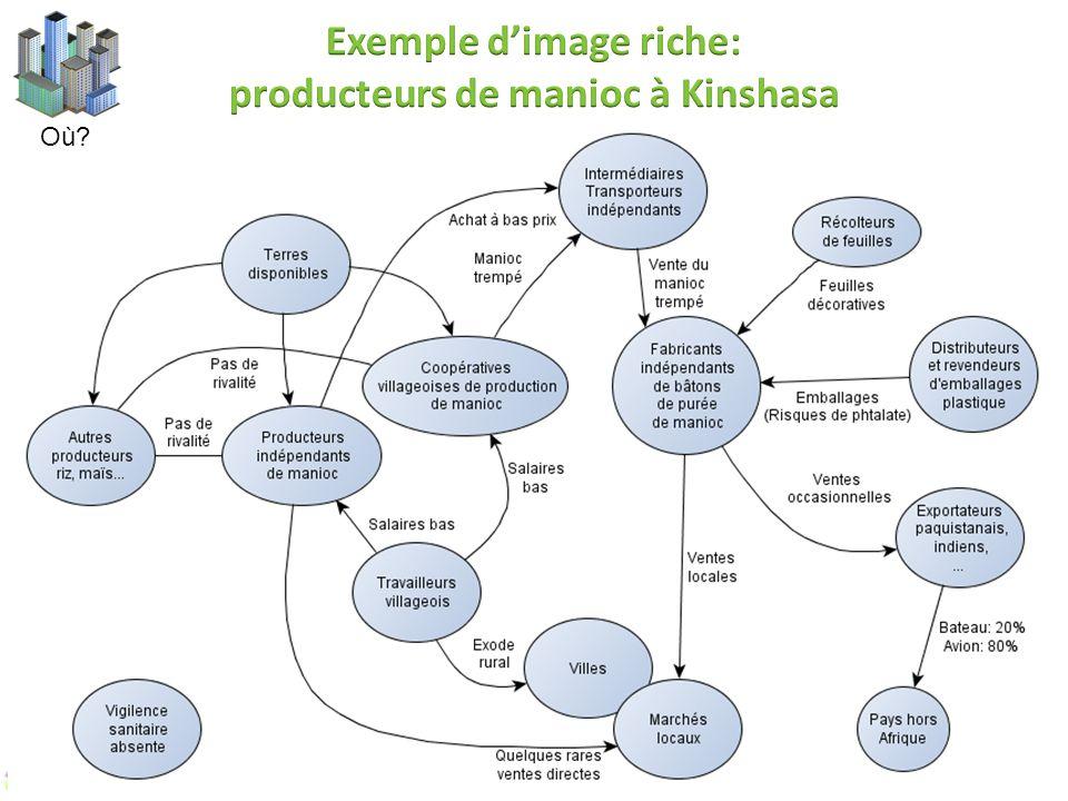 Exemple d'image riche: producteurs de manioc à Kinshasa